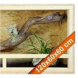 Repiterra Terrarium Reptiles & Batraciens En Bois OSB - Facile à Monter - Aeration Sur Les Cotés - 120x60x60cm