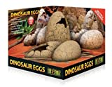 Exoterra Cachette pour Reptiles Oeufs de Dinosaure Exo T