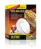 Exoterra Solar Glo Ampoule Simulant Lumière du Soleil pour Reptile 80 W