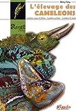 L'élevage des caméléons : Caméléon casque du Yémen, caméléon de Jackson, caméléon panthère