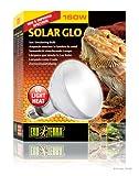 Exoterra Ampoule et Solar Glo pour Reptiles et Amphibiens 160 W
