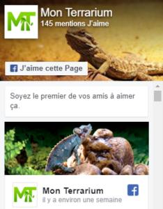 facebook mon terrarium