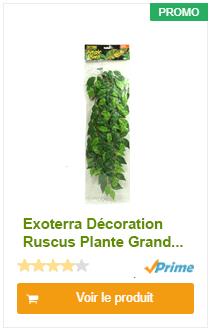 Exoterra Décoration Ruscus Plante Grand Modèle pour Reptiles et Amphibiens