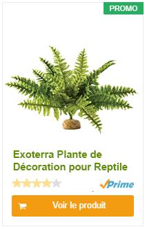 Exoterra Plante de Décoration pour Reptile Fougère de Boston