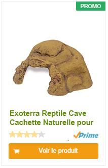 Exoterra Reptile Cave Cachette Naturelle pour Reptile/Amphibien Taille XXL
