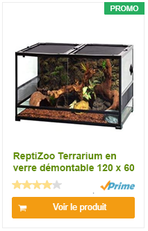 ReptiZoo Terrarium en verre démontable 120 x 60 x 45 cm