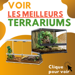 meilleur terrarium reptile