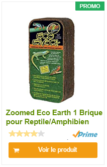 Zoomed Eco Earth 1 Brique pour Reptile/Amphibien