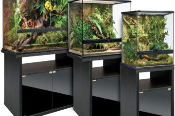 Quel meuble pour un terrarium